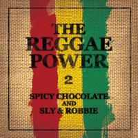 Sm cover the reggae power 2 l 2